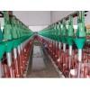 供销自动化养殖设备,大量供应超值的自动化养殖设备