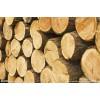 非洲木材进口代理清关公司