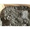 惠州废锡灰现款大量回收