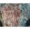 惠州博罗周边工厂废纸皮回收价大涨