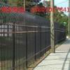 乐东动物园防护栏热销 琼中院墙栅栏定做 三亚围墙护栏厂家