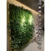 郑州健身房植物墙制作!郑州立体绿化!垂直绿化!|挡墙立体