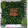 城市园丁郑州别墅绿植墙制作-河南城市园丁园艺有限公司