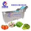 多功能洗菜机 网式连续清洗机 海产品清洗机 清洗设备