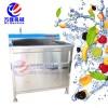 不锈钢小型洗菜机 电动果蔬清洗机 蔬菜清洗设备