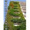 城市园丁郑州阳台生态墙制作-河南城市园丁