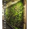 夏季垂直绿化郑州阳台生态墙制作-城市园丁