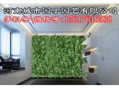 郑州户外植物墙市场价格-河南城市园丁园艺有限公司