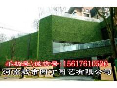 郑州广告字植物墙市场价格-河南城市园丁园艺有限公司