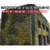 郑州中国式植物墙施工报价-河南城市园丁园艺有限公司