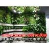 郑州园林植物墙施工报价-河南城市园丁园艺有限公司