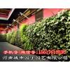 郑州移动式植物墙施工报价-河南城市园丁园艺有限公司