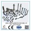 规格齐全厂价供应DIN/ISO/GB标准的各牌号钛标准件