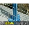 河北鑫海品牌50*50毫米草绿色浸塑焊接网隔离栅
