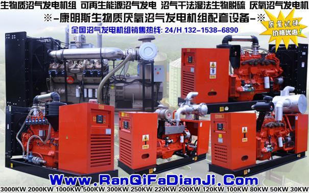 200KW沼气发电机组,250KW沼气发电机组