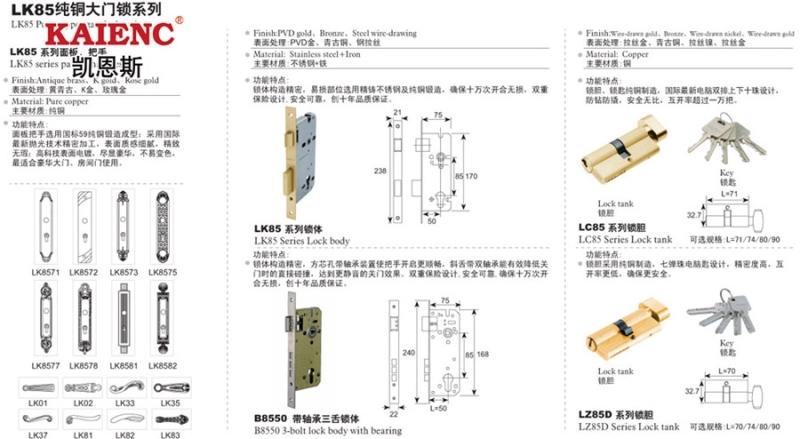 锁芯 纯铜锁芯 不锈钢锁芯 电脑匙 锁芯厂家
